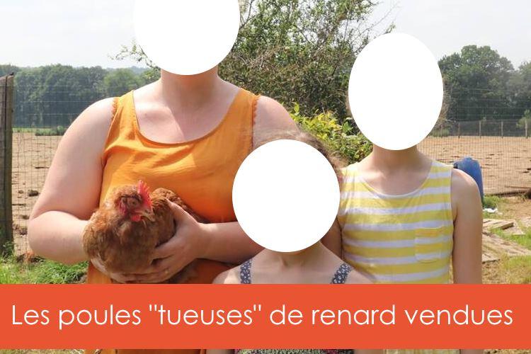 poules-tueuses-de-renard-vendues