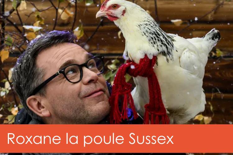 roxane-poule-sussex